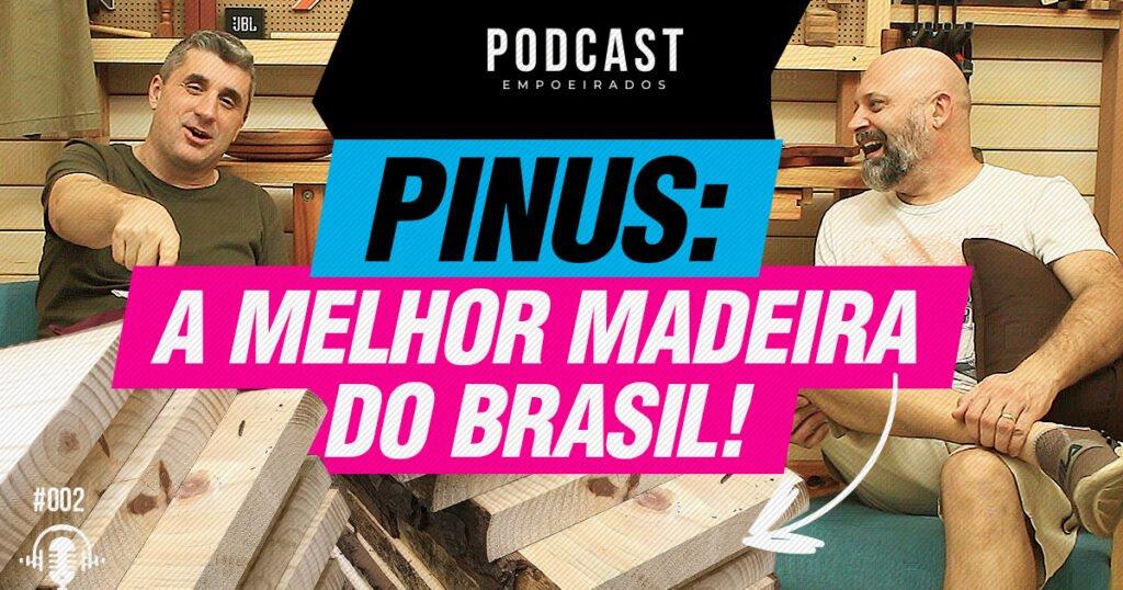 Pinus, A melhor madeira do Brasil!